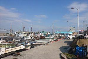 阪南の漁港