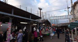 大阪田尻の日曜朝市