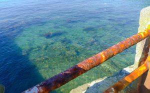 和歌山のきれいな海