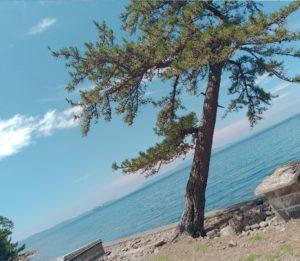 和歌山の無人島